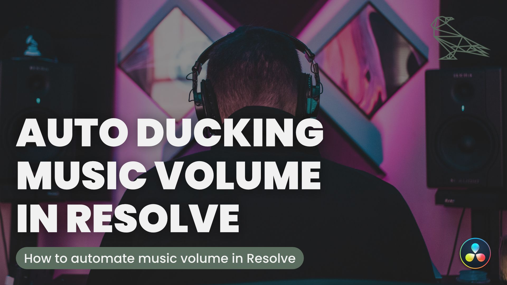 Automatically Lower Music Volume When Talking With Davinci Resolve Auto Ducking